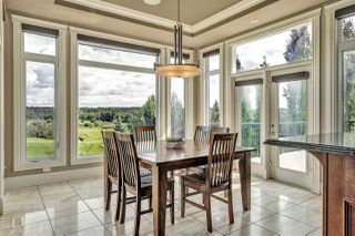 Photo 14: 30 Pinnacle Place: Rural Sturgeon County House for sale : MLS®# E4164609