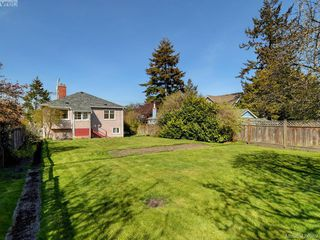 Photo 5: 1141 May Street in VICTORIA: Vi Fairfield West Single Family Detached for sale (Victoria)  : MLS®# 424089