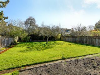 Photo 3: 1141 May Street in VICTORIA: Vi Fairfield West Single Family Detached for sale (Victoria)  : MLS®# 424089