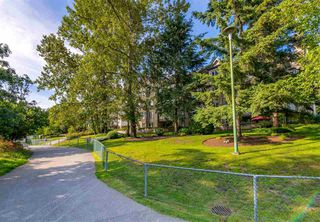 """Photo 27: 423 6707 SOUTHPOINT Drive in Burnaby: South Slope Condo for sale in """"MISSION WOODS"""" (Burnaby South)  : MLS®# R2470852"""