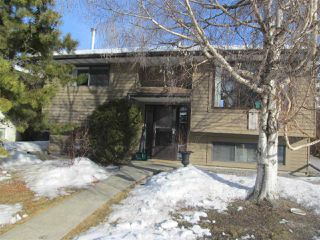 Photo 25: 7817 26 Avenue in Edmonton: Zone 29 House for sale : MLS®# E4205491