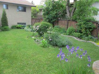 Photo 19: 7817 26 Avenue in Edmonton: Zone 29 House for sale : MLS®# E4205491