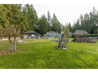 Photo 10: 2027 204A Street in Langley: Brookswood Langley House for sale : MLS®# R2490874
