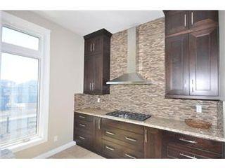 Photo 15: 219 Fleming Crescent in Saskatoon: Willowgrove Single Family Dwelling for sale (Saskatoon Area 01)  : MLS®# 405830