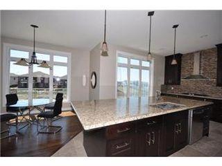 Photo 17: 219 Fleming Crescent in Saskatoon: Willowgrove Single Family Dwelling for sale (Saskatoon Area 01)  : MLS®# 405830