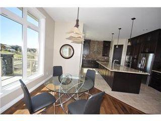 Photo 18: 219 Fleming Crescent in Saskatoon: Willowgrove Single Family Dwelling for sale (Saskatoon Area 01)  : MLS®# 405830