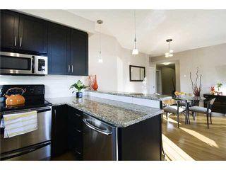 Photo 5: 305 1108 15 Street SW in CALGARY: Sunalta Condo for sale (Calgary)  : MLS®# C3496339