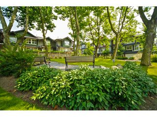 "Photo 31: 16 18199 70TH Avenue in Surrey: Cloverdale BC Townhouse for sale in ""Augusta"" (Cloverdale)  : MLS®# F1424865"