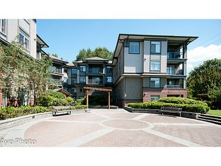 "Photo 12: 204 12020 207A Street in Maple Ridge: Northwest Maple Ridge Condo for sale in ""WESTBROOKE"" : MLS®# V1097465"