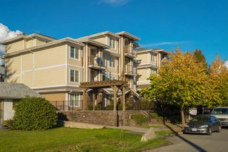 "Photo 19: 109 1969 WESTMINSTER Avenue in Port Coquitlam: Glenwood PQ Condo for sale in ""THE SAPPHIRE"" : MLS®# R2116941"