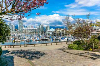 Photo 3: 410 456 MOBERLY Road in Vancouver: False Creek Condo for sale (Vancouver West)  : MLS®# R2131582