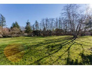 Photo 5: 16910 23RD Avenue in Surrey: Pacific Douglas House for sale (South Surrey White Rock)  : MLS®# R2136702