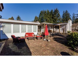 Photo 11: 16910 23RD Avenue in Surrey: Pacific Douglas House for sale (South Surrey White Rock)  : MLS®# R2136702