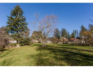 Photo 18: 16910 23RD Avenue in Surrey: Pacific Douglas House for sale (South Surrey White Rock)  : MLS®# R2136702