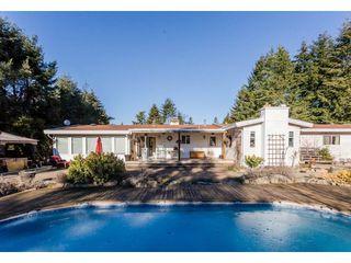 Photo 19: 16910 23RD Avenue in Surrey: Pacific Douglas House for sale (South Surrey White Rock)  : MLS®# R2136702