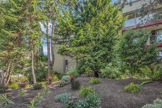 Photo 19: 205 406 Simcoe St in VICTORIA: Vi James Bay Condo Apartment for sale (Victoria)  : MLS®# 762231