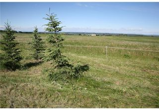 Photo 4: 3 4141 Twp Rd 340: Rural Mountain View County Land for sale : MLS®# C4123342