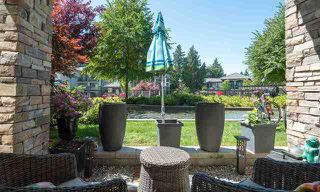 Photo 1: 116 15195 36 Avenue: White Rock Condo for sale (South Surrey White Rock)  : MLS®# R2192480