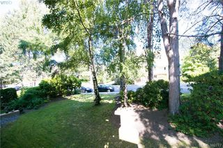 Photo 13: 308 1025 Inverness Road in VICTORIA: SE Quadra Condo Apartment for sale (Saanich East)  : MLS®# 382777