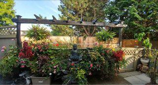 "Photo 19: 16 11580 BURNETT Street in Maple Ridge: East Central Townhouse for sale in ""CEDAR ESTATES"" : MLS®# R2258673"