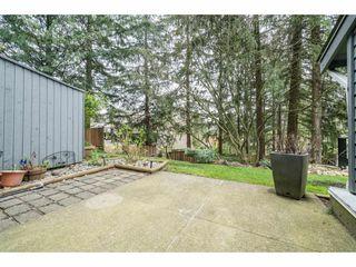 """Photo 17: 37 1240 FALCON Drive in Coquitlam: Upper Eagle Ridge Townhouse for sale in """"FALCON RIDGE"""" : MLS®# R2258936"""