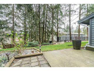 """Photo 18: 37 1240 FALCON Drive in Coquitlam: Upper Eagle Ridge Townhouse for sale in """"FALCON RIDGE"""" : MLS®# R2258936"""