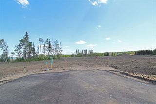 Main Photo: 9 - 53217 RR 263: Rural Parkland County Rural Land/Vacant Lot for sale : MLS®# E4114109