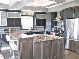 Photo 3: 20 Heron Point: Spruce Grove House for sale : MLS®# E4116607
