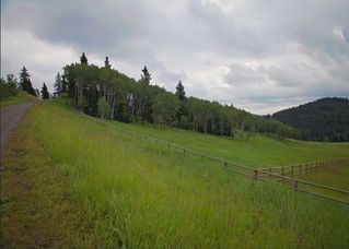 Photo 2: 38 Horseshoe Bend: Rural Foothills County Land for sale : MLS®# C4197142