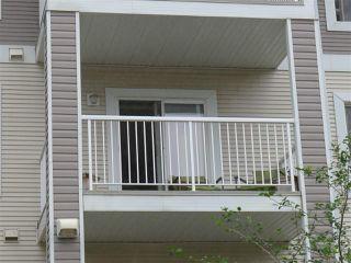 Main Photo: 303 4403 23 Street in Edmonton: Zone 30 Condo for sale : MLS®# E4123602