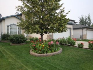 Main Photo: 8732 163 Avenue in Edmonton: Zone 28 House for sale : MLS®# E4134500