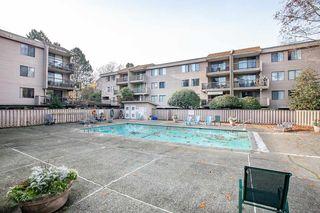 "Photo 20: 202 8511 ACKROYD Road in Richmond: Brighouse Condo for sale in ""Lexington Square"" : MLS®# R2322911"