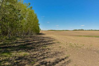 Photo 11: 54128 RGE RD 274: Rural Parkland County Rural Land/Vacant Lot for sale : MLS®# E4138871