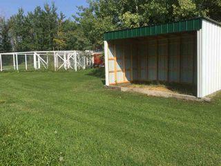 Photo 24: 53003 Range Road 80: Rural Yellowhead House for sale : MLS®# E4144894