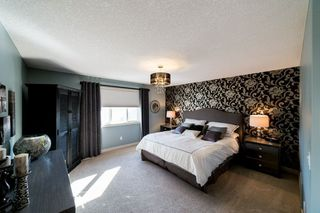 Photo 14: 36 Lafleur Drive: St. Albert House for sale : MLS®# E4148379