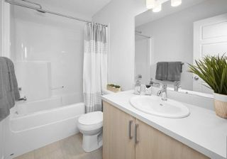 Photo 9: 162 2905 141 Street in Edmonton: Zone 55 Townhouse for sale : MLS®# E4151660