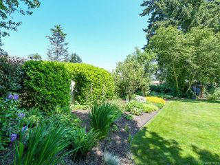 Photo 47: 1664 Elm Ave in COMOX: CV Comox (Town of) House for sale (Comox Valley)  : MLS®# 816423