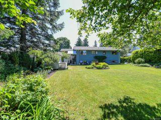 Photo 8: 1664 Elm Ave in COMOX: CV Comox (Town of) House for sale (Comox Valley)  : MLS®# 816423