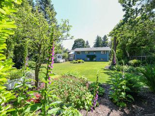 Photo 45: 1664 Elm Ave in COMOX: CV Comox (Town of) House for sale (Comox Valley)  : MLS®# 816423