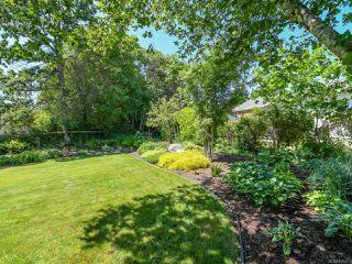 Photo 42: 1664 Elm Ave in COMOX: CV Comox (Town of) House for sale (Comox Valley)  : MLS®# 816423