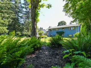 Photo 48: 1664 Elm Ave in COMOX: CV Comox (Town of) House for sale (Comox Valley)  : MLS®# 816423