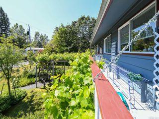 Photo 36: 1664 Elm Ave in COMOX: CV Comox (Town of) House for sale (Comox Valley)  : MLS®# 816423