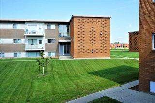 Photo 3: 7 9750 62 Street in Edmonton: Zone 18 Condo for sale : MLS®# E4168705