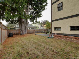 Photo 17: 1010 Transit Road in VICTORIA: OB South Oak Bay Single Family Detached for sale (Oak Bay)  : MLS®# 416109