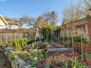 Photo 21: 1632 Hollywood Crescent in VICTORIA: Vi Fairfield East Single Family Detached for sale (Victoria)  : MLS®# 424034