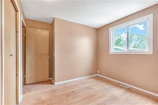 Photo 12: 43 ABERDARE Road NE in Calgary: Abbeydale Detached for sale : MLS®# C4301204