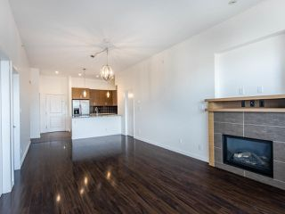 Photo 15: 409 288 HAMPTON Street in New Westminster: Queensborough Condo for sale : MLS®# R2478799