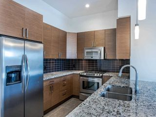 Photo 9: 409 288 HAMPTON Street in New Westminster: Queensborough Condo for sale : MLS®# R2478799