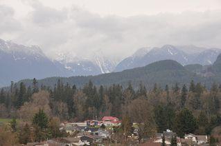 Photo 19: 508 22315 122 AVENUE in Maple Ridge: East Central Condo for sale : MLS®# R2474229
