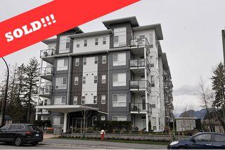 Photo 1: 508 22315 122 AVENUE in Maple Ridge: East Central Condo for sale : MLS®# R2474229